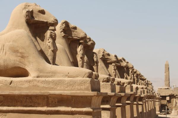 Senior Citizens Cairo and Luxor tour package