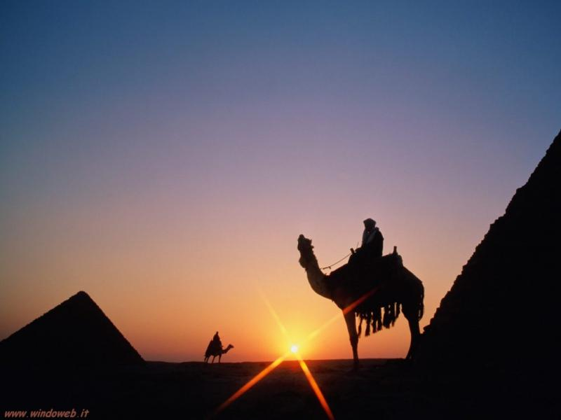 Camel or Horse Riding at Pyramids area