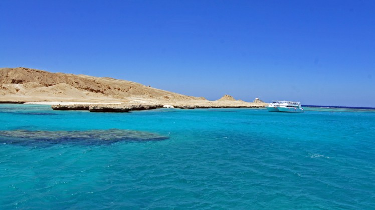 Red-Sea (7)
